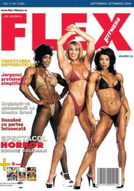 FLEX-3---2004-1